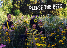 Please The Bees Copy