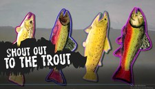 Shout Out To The Trout Ii